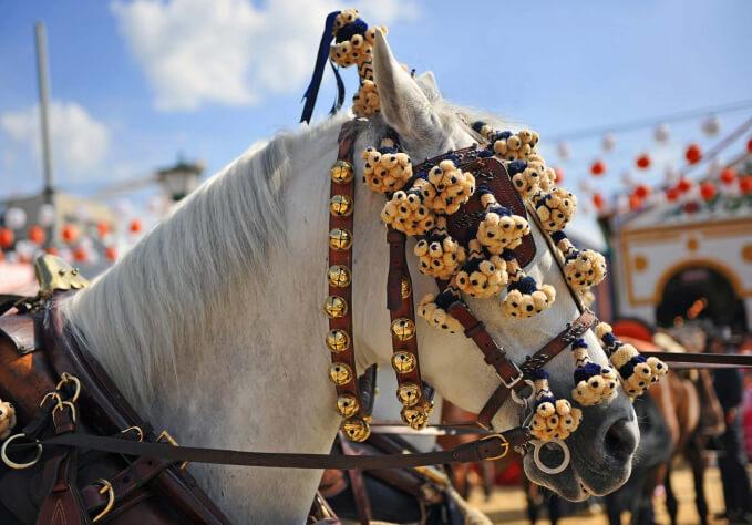 Vitae Villas Spain Andalucia Equestrian Tradition