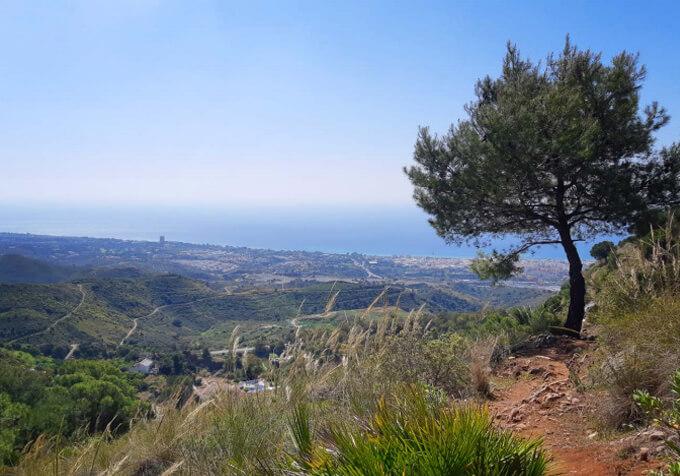 Vitae Villas Spain Andalucia La Concha