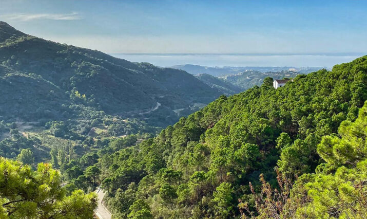 Vitae Villas Spain Benahavis Andalucia Monte Mayor 2